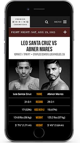 Fight preview listing on iphone screen